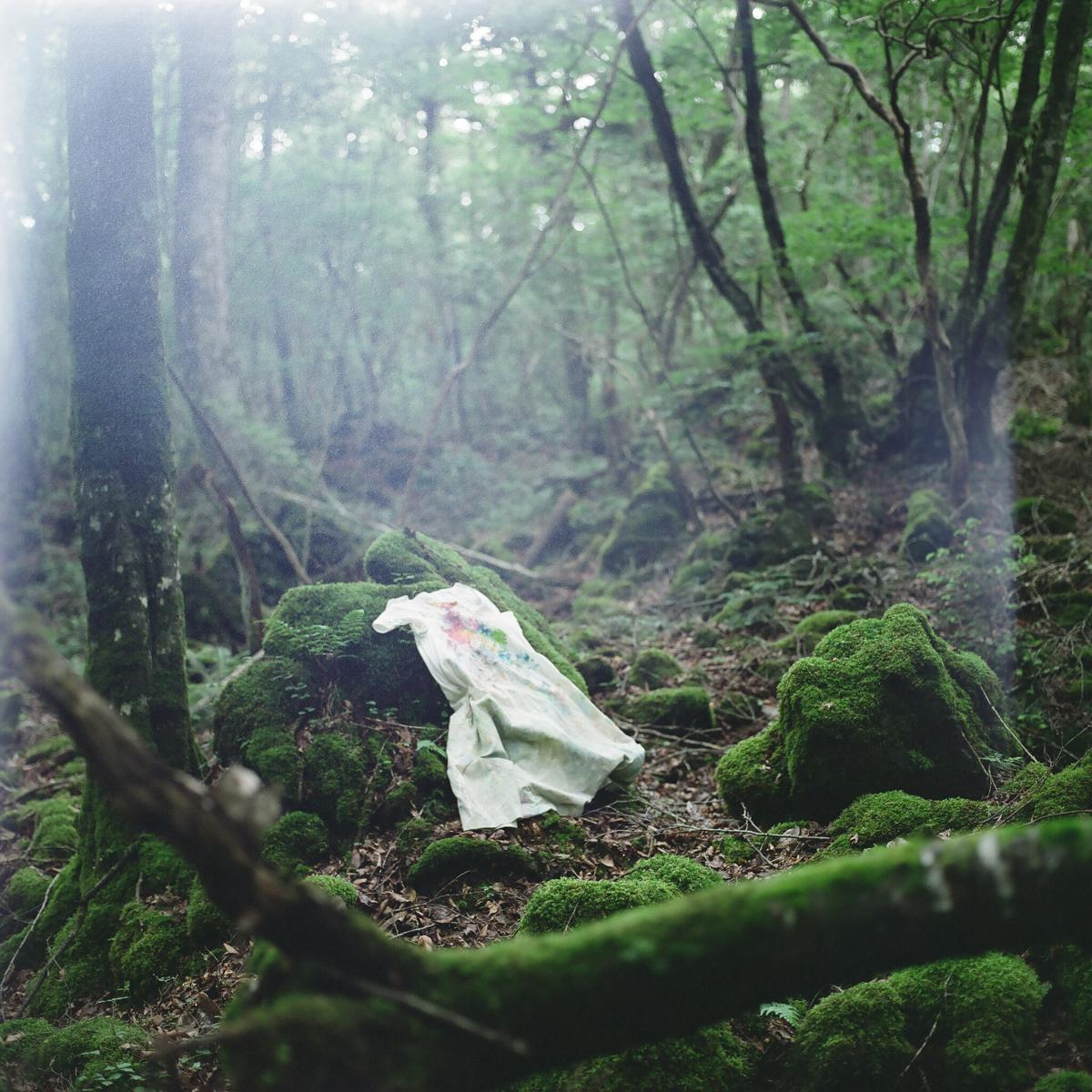 Photography by Kazuhisa Maenaka